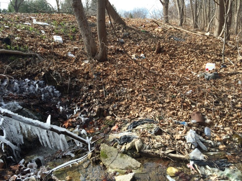 Trash resting in a stream beside a roadside pull off greets visitors.