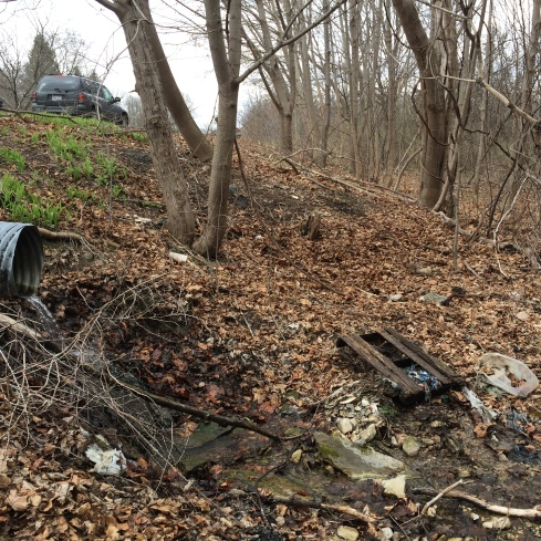 Trash pollutes a stream on a wooded hillside descending to Cayuga Lake.