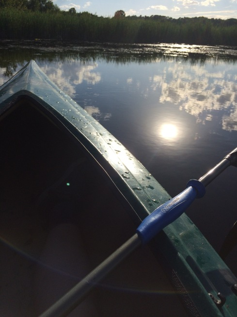 Sunlight and white, puffy clouds reflect upon a marsh's waters beside the nose of a green kayak
